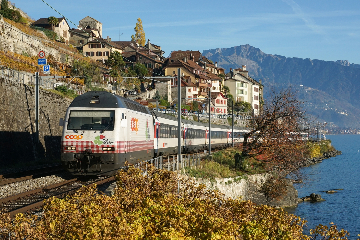 SBB Re 460 083-9 Coop Mini Region 04.jpg